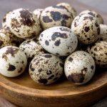 Mơ thấy trứng cút là điềm báo gì? Nên đánh lô đề con nào?